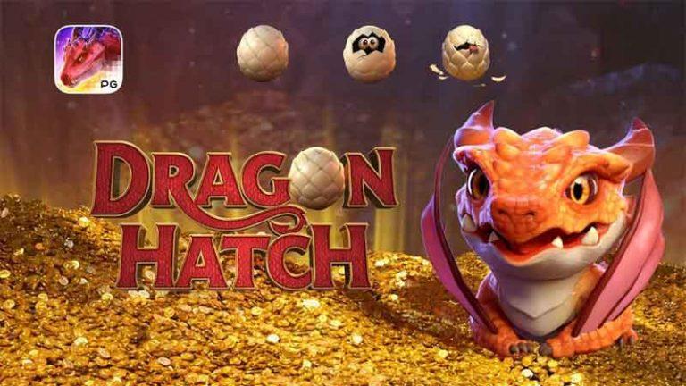Dragon Hatch สล็อตออนไลน์ Pg slot