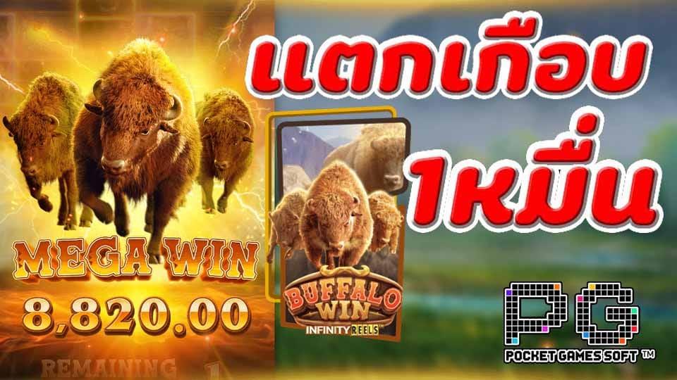สล็อต Buffalo Win slotควายป่าแตกเกือบ 10000